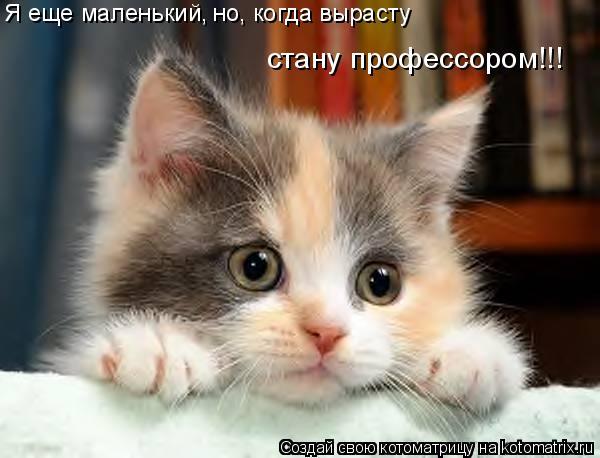 Котоматрица: Я еще маленький, но, когда вырасту стану профессором!!!