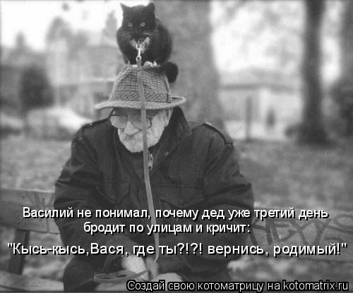 """Котоматрица: Василий не понимал, почему дед уже третий день  бродит по улицам и кричит: """"Кысь-кысь,Вася, где ты?!?! вернись, родимый!"""""""