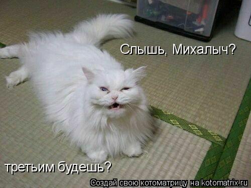 Котоматрица: Слышь, Михалыч? третьим будешь?