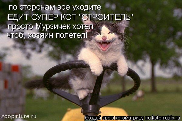 """Котоматрица: по сторонам все уходите ЕДИТ СУПЕР КОТ """"СТРОИТЕЛЬ"""" просто Мурзичек хотел чтоб, хозяин полетел!"""
