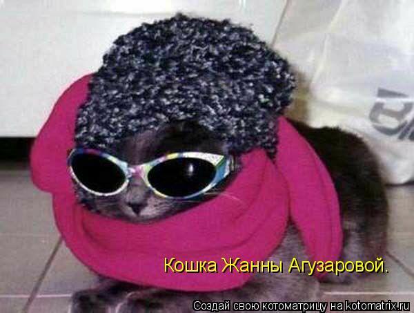 Котоматрица: Кошка Жанны Агузаровой.