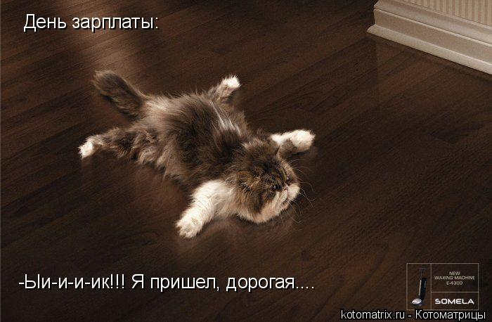 Котоматрица: -Ыи-и-и-ик!!! Я пришел, дорогая....  День зарплаты: