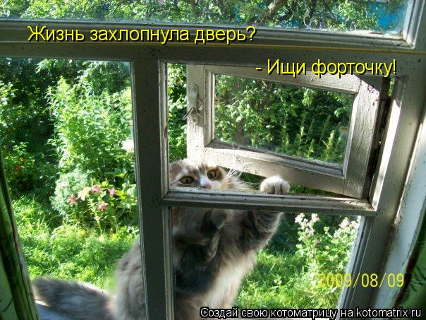 Котоматрица: Жизнь захлопнула дверь?  - Ищи форточку!