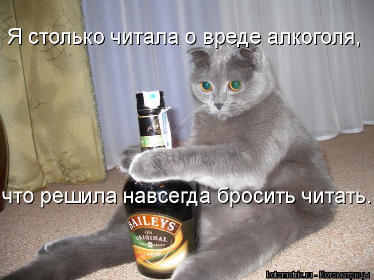 Котоматрица: Я столько читала о вреде алкоголя, что решила навсегда бросить читать..