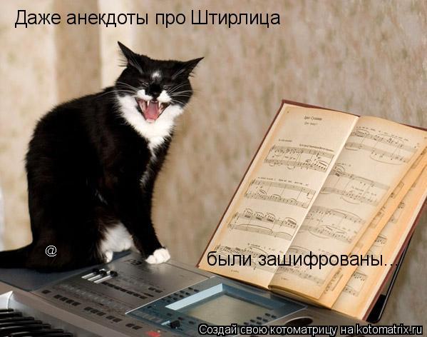 Котоматрица: Даже анекдоты про Штирлица  были зашифрованы...