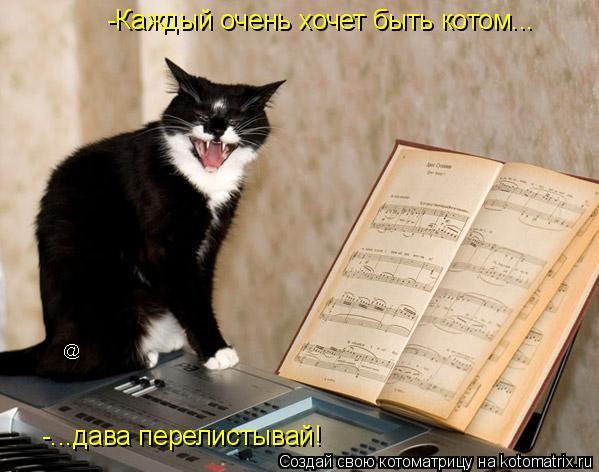 Котоматрица: -Каждый очень хочет быть котом... -...дава перелистывай!