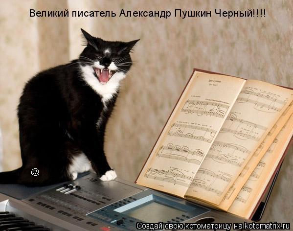 Котоматрица: Великий писатель Александр Пушкин Черный!!!!