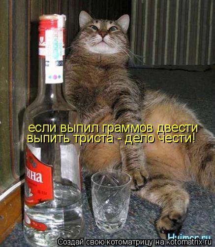 Котоматрица: если выпил граммов двести выпить триста - дело чести!