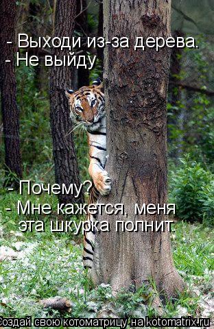 Котоматрица: - Выходи из-за дерева. - Не выйду - Почему? - Мне кажется, меня эта шкурка полнит.