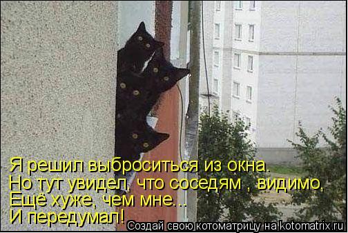 Котоматрица: Я решил выброситься из окна. Но тут увидел, что соседям , видимо,  Ещё хуже, чем мне... И передумал!