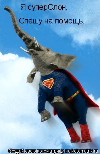 Котоматрица: Я суперСлон Спешу на помощь. .
