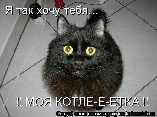 Котоматрица: Я так хочу тебя... !! МОЯ КОТЛЕ-Е-ЕТКА !!