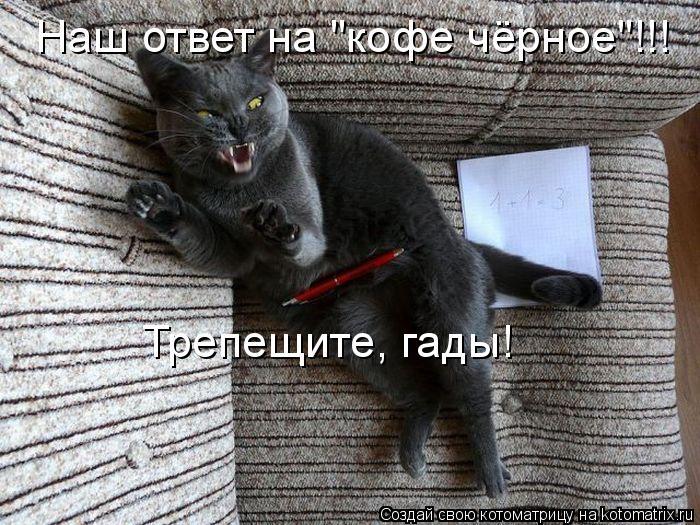 """Котоматрица: Наш ответ на """"кофе чёрное""""!!! Трепещите, гады!"""