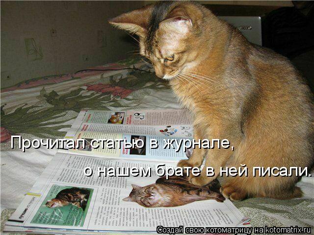 Котоматрица: Прочитал статью в журнале, о нашем брате в ней писали.