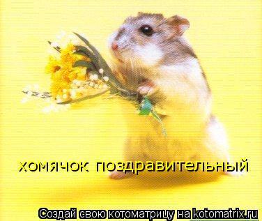Котоматрица: хомячок поздравительный