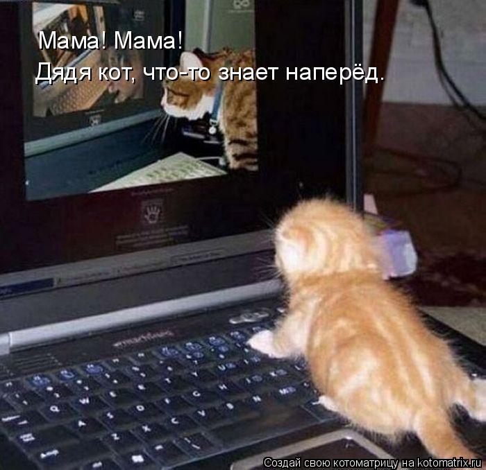 Котоматрица: Мама! Мама! Дядя кот, что-то знает наперёд.