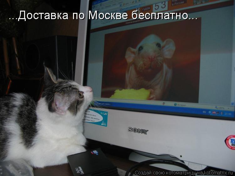 Котоматрица: ...Доставка по Москве бесплатно...