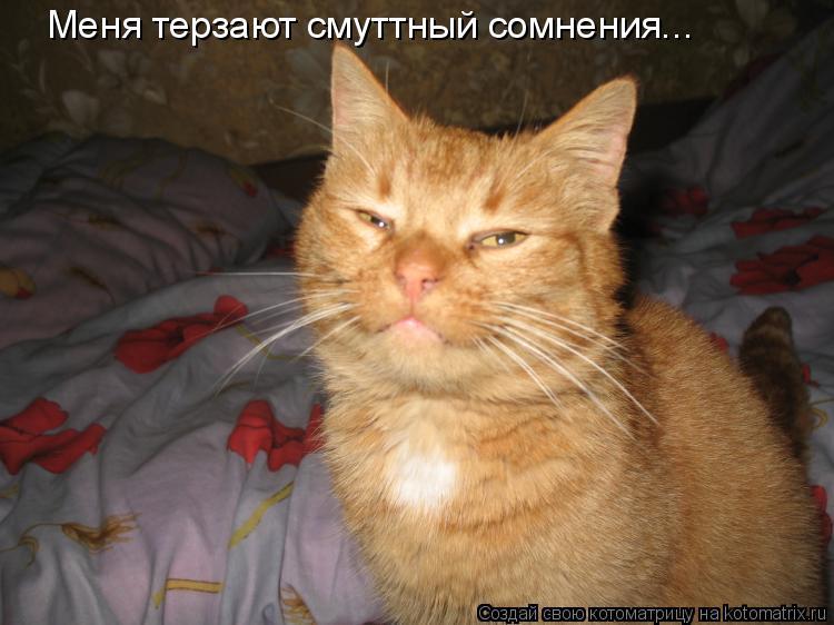 Котоматрица: Меня терзают смуттный сомнения...