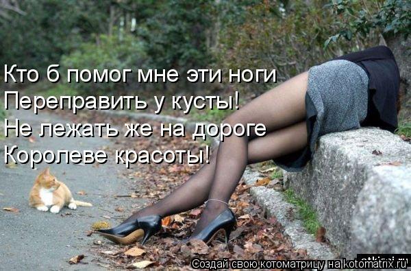 Котоматрица: Кто б помог мне эти ноги Переправить у кусты! Не лежать же на дороге Королеве красоты!