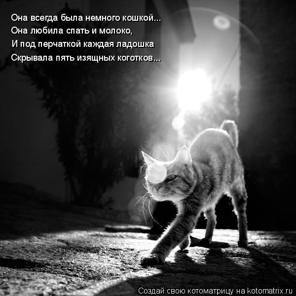 Котоматрица: Она всегда была немного кошкой... Она любила спать и молоко, И под перчаткой каждая ладошка Скрывала пять изящных коготков...