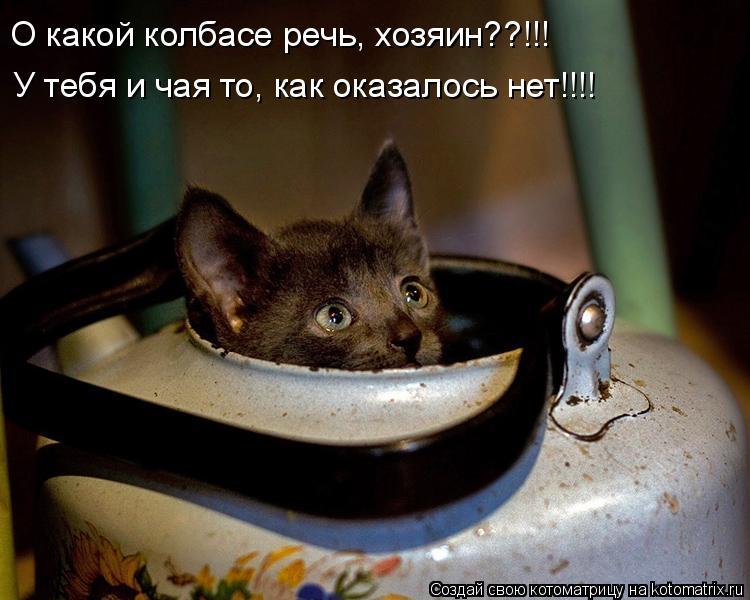 Котоматрица: О какой колбасе речь, хозяин??!!! У тебя и чая то, как оказалось нет!!!!