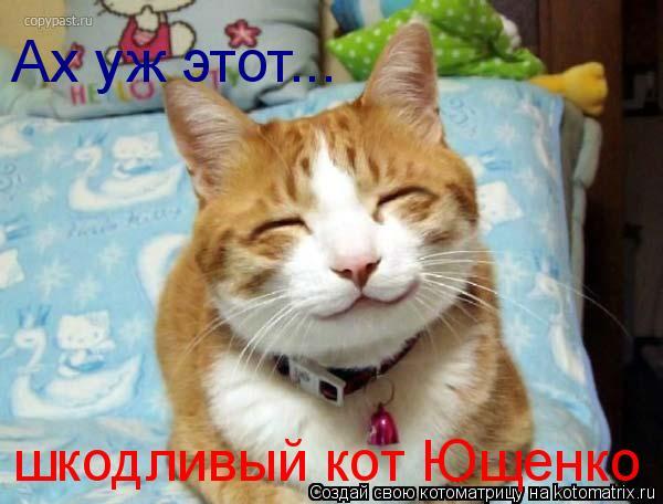 Котоматрица: Ах уж этот... шкодливый кот Ющенко