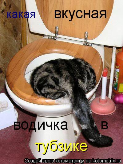 Котоматрица: какая вкусная водичка в тубзике