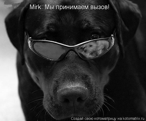 Котоматрица: Mirk: Мы принимаем вызов!