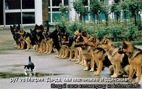 Котоматрица: ру7 vs Мафия. Да-да, мы маленькие и одинокие :)