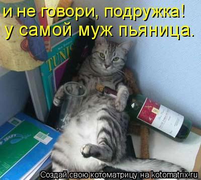 Котоматрица: и не говори, подружка! у самой муж пьяница.