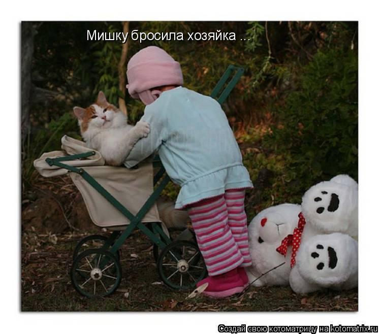 Котоматрица: Мишку бросила хозяйка ...