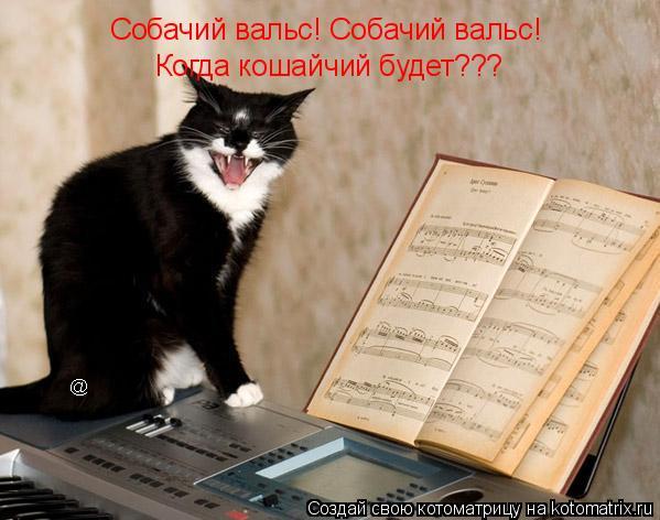 Котоматрица: Собачий вальс! Собачий вальс! Когда кошайчий будет???
