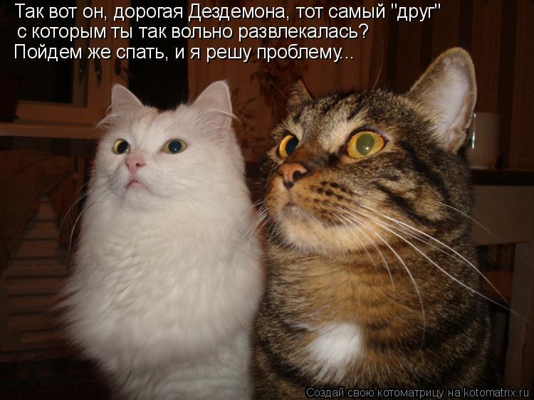 """Котоматрица: с которым ты так вольно развлекалась?  Так вот он, дорогая Дездемона, тот самый """"друг""""  Пойдем же спать, и я решу проблему..."""