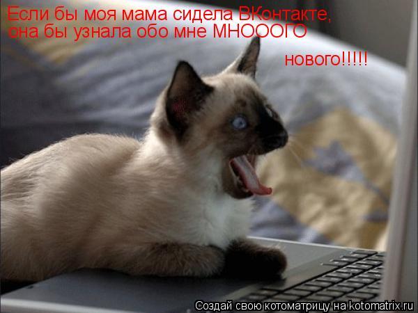 Котоматрица: Если бы моя мама сидела ВКонтакте, она бы узнала обо мне МНОООГО нового!!!!!