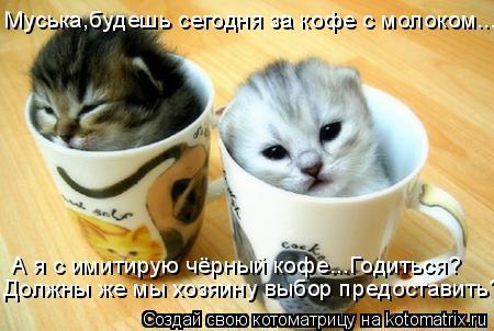 Котоматрица: Муська,будешь сегодня за кофе с молоком... А я с имитирую чёрный кофе...Годиться? Должны же мы хозяину выбор предоставить?!