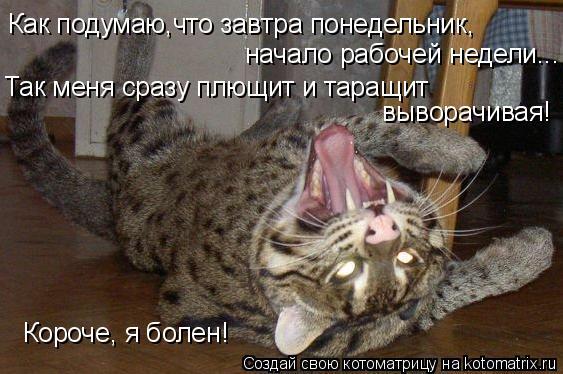 Котоматрица: Как подумаю,что завтра понедельник, начало рабочей недели... Так меня сразу плющит и таращит  выворачивая! Короче, я болен!