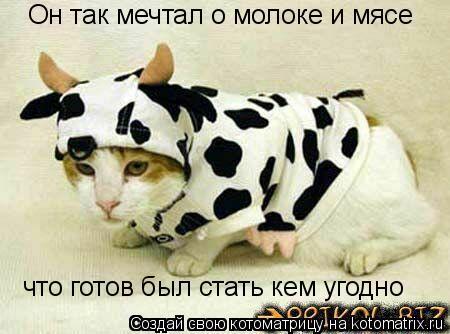 Котоматрица: Он так мечтал о молоке и мясе что готов был стать кем угодно