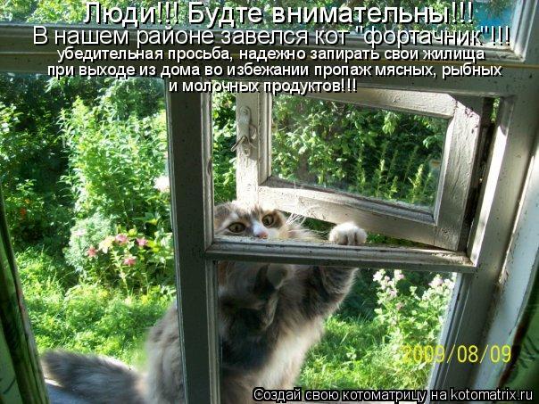 """Котоматрица: Люди!!! Будте внимательны!!! В нашем районе завелся кот """"фортачник""""!!! убедительная просьба, надежно запирать свои жилища  при выходе из дома в"""