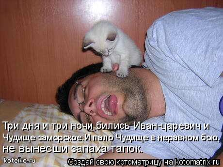 Котоматрица: Чудище заморское.И пало Чудище в неравном бою, Три дня и три ночи бились Иван-царевич и не вынесши запаха тапок.