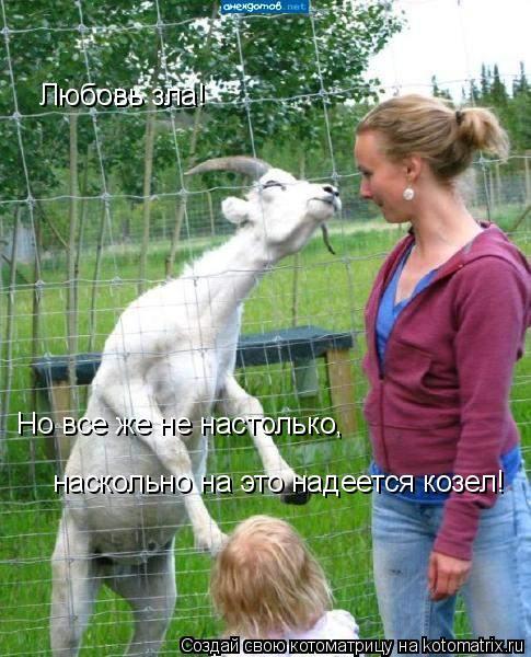 Котоматрица: Любовь зла! Но все же не настолько, наскольно на это надеется козел!