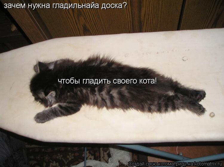 Котоматрица: зачем нужна гладильнайа доска? чтобы гладить своего кота!