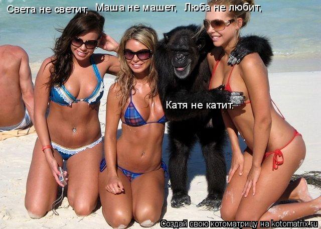 Котоматрица: Света не светит,  Маша не машет,  Люба не любит,  Катя не катит.
