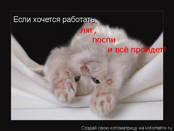 Котоматрица: Если хочется работать,  ляг,  поспи и всё пройдет!