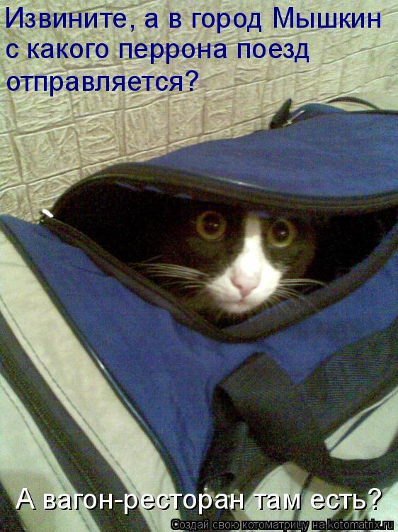 Котоматрица: Извините, а в город Мышкин  с какого перрона поезд  отправляется? А вагон-ресторан там есть?