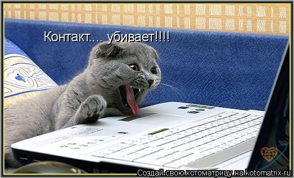 Котоматрица: Контакт.... убивает!!!!