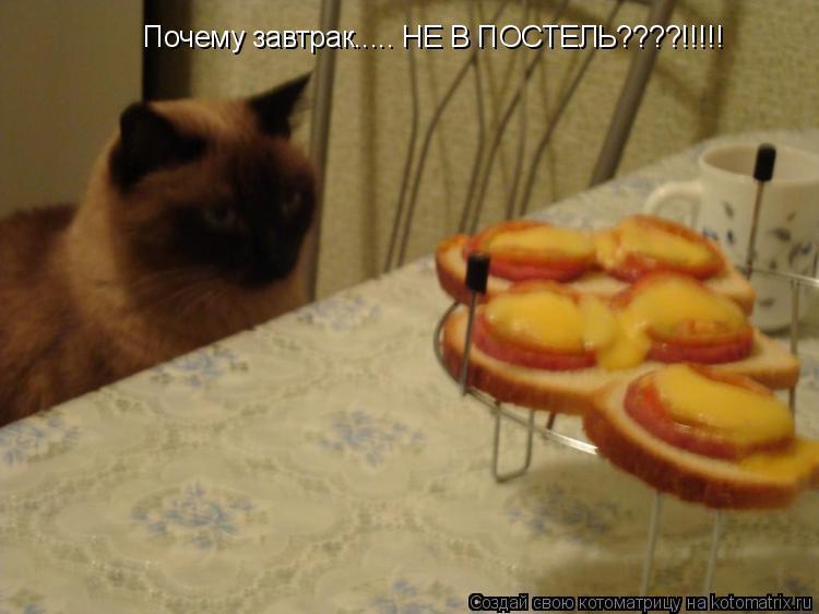 Котоматрица: Почему завтрак..... НЕ В ПОСТЕЛЬ????!!!!!