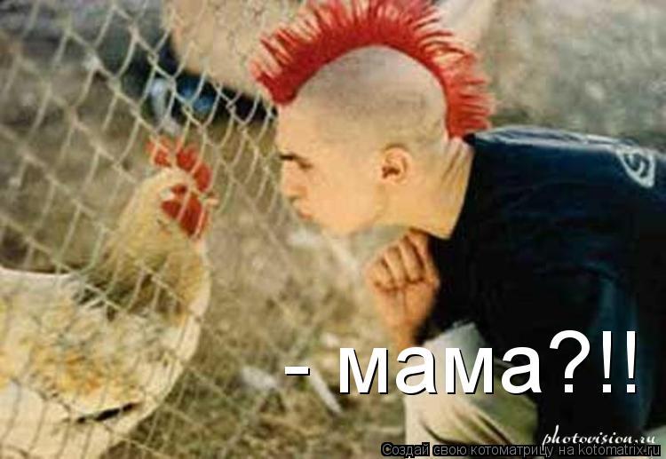 Котоматрица: - мама?!!