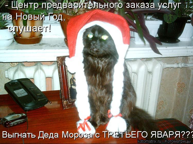 Котоматрица: на Новый Год, слушает! - Центр предварительного заказа услуг Выгнать Деда Мороза с ТРЕТЬЕГО ЯВАРЯ????