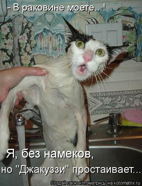 """Котоматрица: - В раковине моете...! Я, без намеков,  но """"Джакуззи"""" простаивает..."""