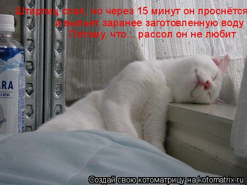 Котоматрица: Штирлиц спал, но через 15 минут он проснётся и выпьет заранее заготовленную воду Потому, что... рассол он не любит